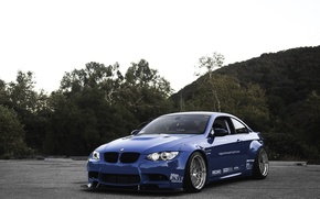 Picture the sky, trees, blue, bmw, BMW, front view, blue, e92