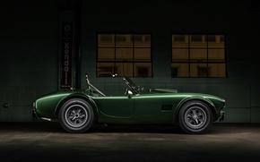 Picture Shelby, Dragon, Green, Cobra, Side, CSX2472, 1365, Dragonsnake