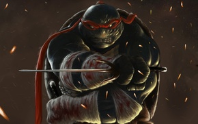 Picture weapons, teenage mutant ninja turtles, bandages, art, TMNT, wounds, Teenage mutant ninja turtles, blood, Raphael