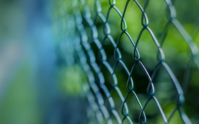 Picture macro, mesh, the fence, grille