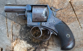 Picture gun, background, Bulldog, Webley, 450CF