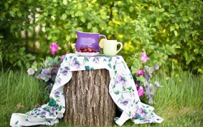 Picture summer, nature, berries, stump, garden, plate, Cup, pitcher, tablecloth