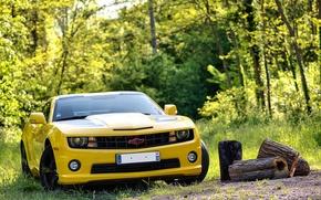 Picture 2012, Chevrolet, camaro, chevrolet, transformers, Camaro, transformers edition
