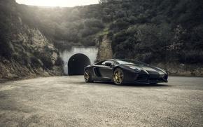 Picture Lamborghini, Front, Tuning, LP700-4, Aventador, Mansory, Supercar, Wheels, RDB LA Matte, Savini