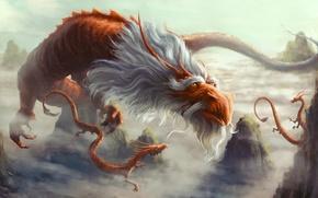 Picture look, fiction, rocks, art, horns, beard, old dragon