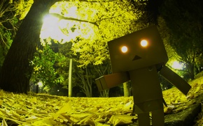 Picture eyes, light, trees, Park, foliage, horror, robot, danbo, Danboard, box, toy