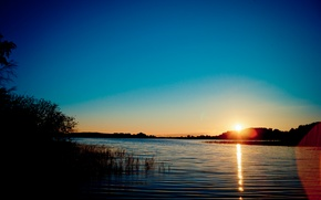 Picture wave, forest, water, the sun, light, lake, Sunset, ray