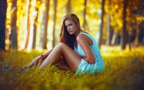 Picture Color, Blonce, Beauty, Yellow, Model, Lindsey W, Beautiful, Natural, Sunset, Nature, Girl, Forest, Trees, Light