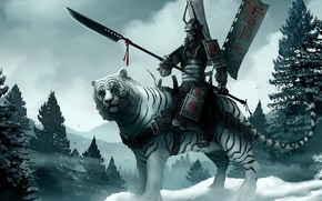 Picture snow, Tiger, warrior