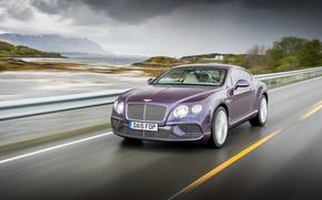 Picture Bentley, Continental, Bentley, continental, 2015
