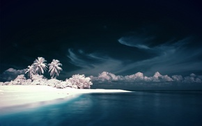 Picture The sky, Water, White, Island, Palm trees