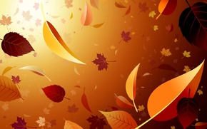 Picture autumn, leaves, light, Wallpaper, maple, falling leaves