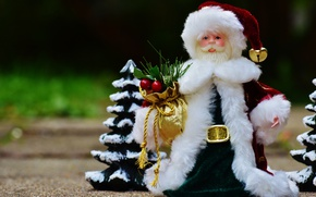 Picture grass, nature, background, holiday, toy, new year, Christmas, spruce, doll, costume, coat, decoration, beard, gold …