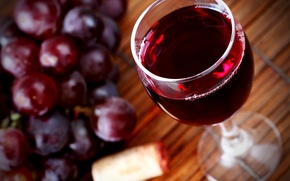 Picture wine, red, glass, grapes, tube