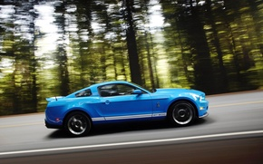 Picture speed, Ford, Shelby GT 500