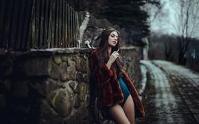 Wallpaper cat, girl, Magda