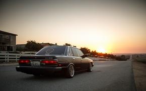 Picture Toyota, Cressida, JDM, Low, BellyScraper