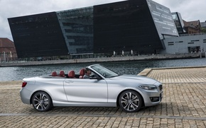 Picture photo, BMW, Convertible, Car, convertible, Side, 2015, Silver, F23, 228i