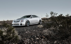 Picture stones, grey, Cadillac, coupe, cts