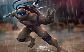 Picture rain, turtle, sword, ninja, tmnt, mutant, Leonardo, Teenage Mutant Ninja Turtles, leo