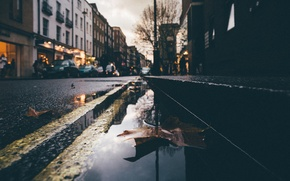 Wallpaper leaves, night, reflection, people, tree, street, mirror, puddle, cars, lamppost, rainy