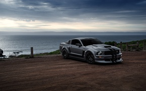 Picture Mustang, Ford, Muscle, Car, Front, Grey, San Francisco, Boss, Sea, Collection, Aristo, 281