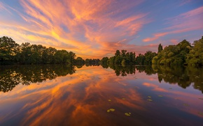 Picture trees, sunset, lake, reflection, Germany, Hamburg, Germany, Hamburg, High Deicher Lake, lake Haendiges