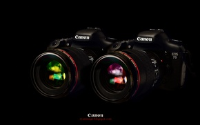 Picture Wallpaper, black background, Canon, EF 100mm F2.8L macro Hybrid IS, EOS 7D, two cameras