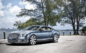 Picture the sky, trees, shore, coupe, Bentley, Continental, Continental, Bentley, the front