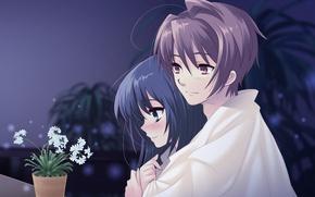 Picture flower, look, love, Girl, hugs, Guy