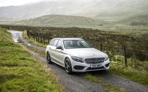 Picture Mercedes-Benz, White, Car, AMG, 2016, 4MATIC Estate
