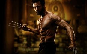 Wallpaper Wolverine, Hugh Jackman, Hugh Jackman, Logan, The Wolverine, Wolverine