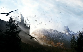 Picture forest, mountains, birds, castle