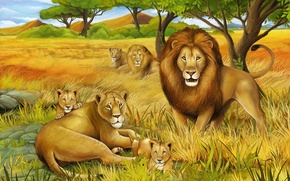 Picture Leo, the cubs, lioness, animals, king