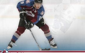 Picture hockey, Colorado, NHL, Joe Sakic