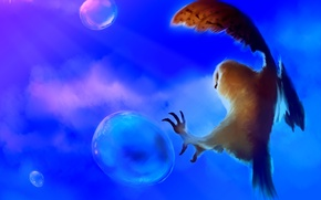 Wallpaper bubbles, background, owl, bird, art