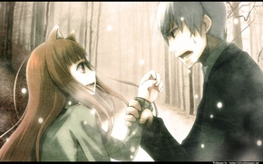 Picture girl, anime, art, Horo, spice and wolf, machine, Horo