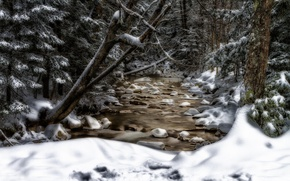 Picture snow, trees, stream, New Hampshire