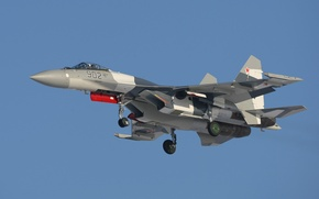 Picture Fighter, The Russian air force, Su-35S, SU-35S