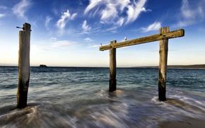 Picture sea, tree, the horizontal bar, bars