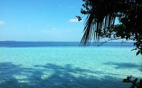 Wallpaper the ocean, island, Maldives, vacation