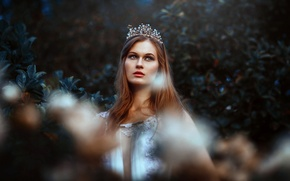 Picture girl, face, background, crown, beauty