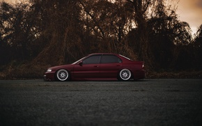 Picture tuning, red, Honda, Accord, red, Honda, chord, stance