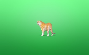 Picture tiger, animal, minimalism, tiger, greenish background, a cunning face