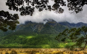 Wallpaper mountain, slope, summer, clouds, forest, top