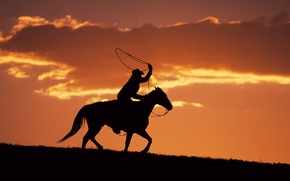 Picture horse, the evening, silhouette, cowboy, lasso