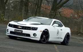 Picture white, Chevrolet, Machine, wheel