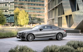 Picture Mercedes-Benz, Coupe, C-300, AMG-Line