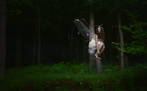 Picture forest, girl, butterfly