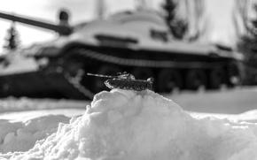 Picture victory Park, model tank, T-62, Kazan, tank, winter, b/W